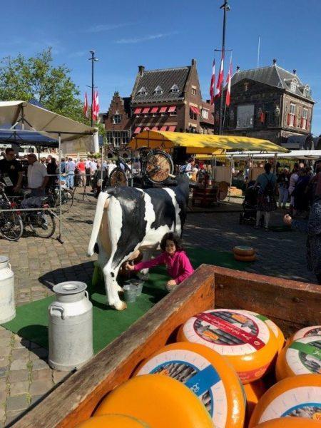 Kaasmarkt Mea
